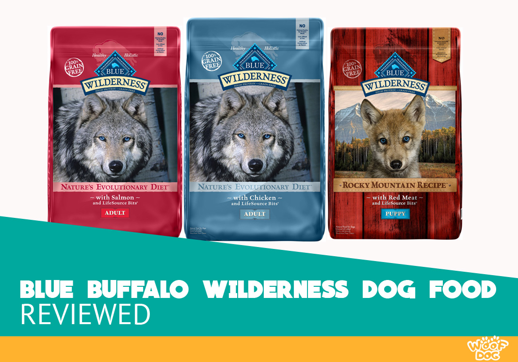Featured image of Blue Buffalo Wilderness Dog Food Review
