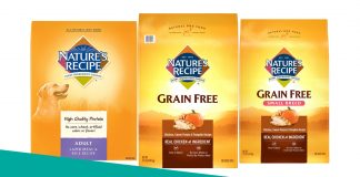 Featured image of natures recipe dog food review