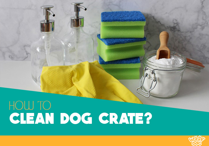 cleaning supplies for different type of dog crates