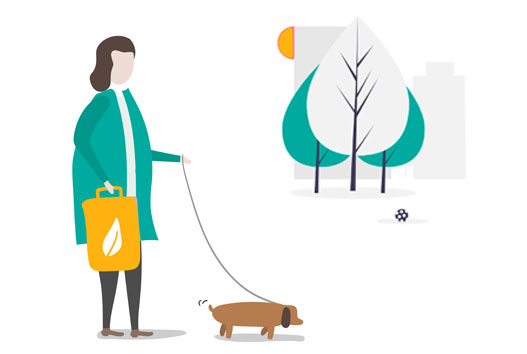 dog on a leash illustration