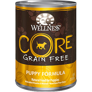 Product image of Wellness core puppy canned